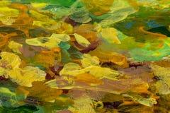 Struttura arancio verde della pittura ad olio del primo piano dell'estratto su tela immagini stock libere da diritti