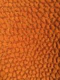 Struttura arancione Immagini Stock