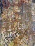 Struttura arrugginita e multicolore del muro di cemento Fotografia Stock Libera da Diritti