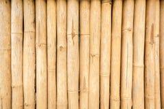 Struttura asciutta del bambù di Brown Immagine Stock