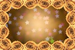 struttura asciutta della rosa di bianco sul bokeh della stella della sfuocatura Fotografia Stock Libera da Diritti