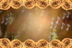 struttura asciutta della rosa di bianco sul fondo del bokeh della nota della sfuocatura Fotografia Stock Libera da Diritti