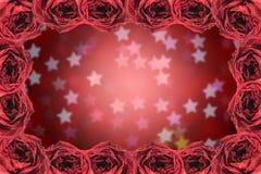 struttura asciutta della rosa rossa sul bokeh della stella della sfuocatura Fotografia Stock