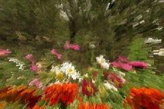 Struttura astratta con i fiori Immagini Stock