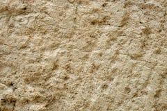 Struttura astratta del fondo di suolo torboso Fotografia Stock Libera da Diritti