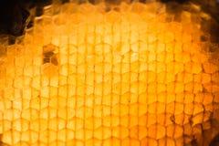 Struttura astratta della cera dell'ape Immagini Stock