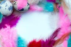 Struttura astratta delle piume colorate Immagini Stock Libere da Diritti