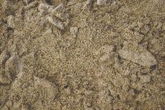 Struttura bagnata della sabbia Tema dell'oceano e del mare Sfondo naturale fotografia stock