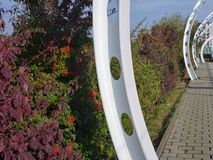 Struttura bianca con i cespugli variopinti di autunno fotografia stock libera da diritti