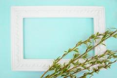 Struttura bianca con i rami del salice verde su un fondo verde Spazio della copia nel mezzo per il vostro testo fotografie stock