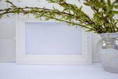 Struttura bianca con i rami verdi del salice su un fondo bianco Spazio della copia nel mezzo per il vostro testo fotografie stock libere da diritti