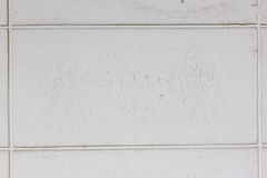 Struttura bianca del blocchetto del mattone Fotografia Stock