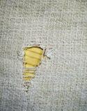 Struttura bianca dell'asciugamano del tessuto della cialda del tessuto con il foro fondo, cucina immagine stock