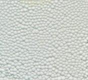 Struttura bianca della schiuma di stirolo Immagine Stock