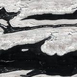 Struttura in bianco e nero del granito Fondo quadrato senza cuciture, fino a immagini stock libere da diritti
