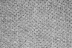 Struttura in bianco e nero del pannello rigido Fotografia Stock Libera da Diritti