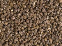 Struttura cinese del tè verde Fotografie Stock Libere da Diritti
