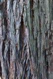 Struttura colorata di legno per gli ambiti di provenienza Immagini Stock
