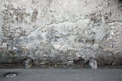 Fondo Di Struttura Graffiato Parete Grigio Scuro Fotografia Stock - Immagine: 48333180