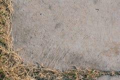 Struttura concreta con erba asciutta Immagine Stock