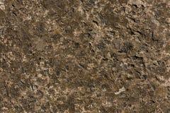 Struttura concreta grigia della pietra del cemento di Brown Fotografie Stock