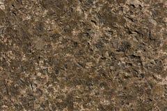 Struttura concreta grigia della pietra del cemento di Brown Immagini Stock