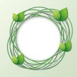 Struttura creativa di Eco con i cerchi e le foglie Fotografia Stock