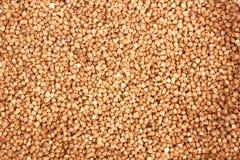 Struttura cruda del fondo dei grani del grano saraceno Fotografia Stock