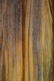 Struttura d'acciaio arrugginita Fotografie Stock Libere da Diritti
