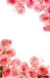 Struttura dalle rose. Fotografia Stock