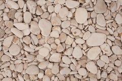 Struttura decorativa del pavimento Immagini Stock