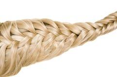 Struttura dei capelli Fotografie Stock