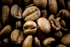 Struttura dei chicchi di caffè Immagine Stock Libera da Diritti