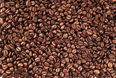 Struttura dei chicchi di caffè Fotografie Stock