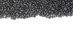 Struttura dei fagioli neri nel fondo bianco Il nero del phaseolus vulgaris ' Fotografia Stock Libera da Diritti