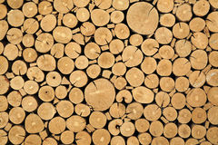 Struttura dei libri macchina tagliati del legname Fotografie Stock