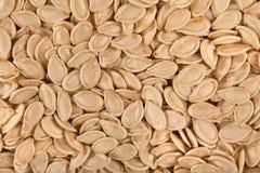 Struttura dei semi di zucca Immagini Stock