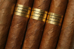 Struttura dei sigari di Avana Fotografia Stock Libera da Diritti