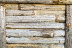 Struttura del bambù del primo piano Immagine Stock Libera da Diritti