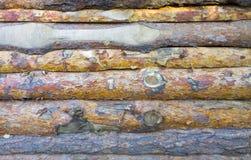 Struttura del bordo di legno della lastra Bordo non trattato di lavagna Immagine Stock Libera da Diritti