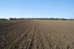 Struttura del campo coltivato, Fotografie Stock