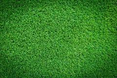 Struttura del campo di erba per progettazione di massima del campo da golf, del campo di calcio o del fondo di sport Fotografie Stock