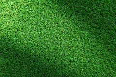 Struttura del campo di erba per progettazione di massima del campo da golf, del campo di calcio o del fondo di sport Fotografie Stock Libere da Diritti