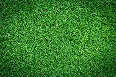 Struttura del campo di erba per progettazione di massima del campo da golf, del campo di calcio o del fondo di sport Fotografia Stock