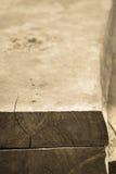 Struttura del ceppo Fotografia Stock
