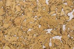 Struttura del Corkwood mista con gesso bianco Fotografie Stock