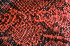Struttura del cuoio della pelle di serpente Fotografie Stock Libere da Diritti