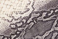 Struttura del cuoio genuino con imitazione del rettile esotico con con un modello interessante, fondo d'avanguardia, beige Fotografie Stock Libere da Diritti