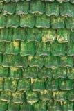 Struttura del dettaglio dell'onda dello stucco della piuma Fotografia Stock