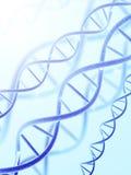 Struttura del DNA royalty illustrazione gratis